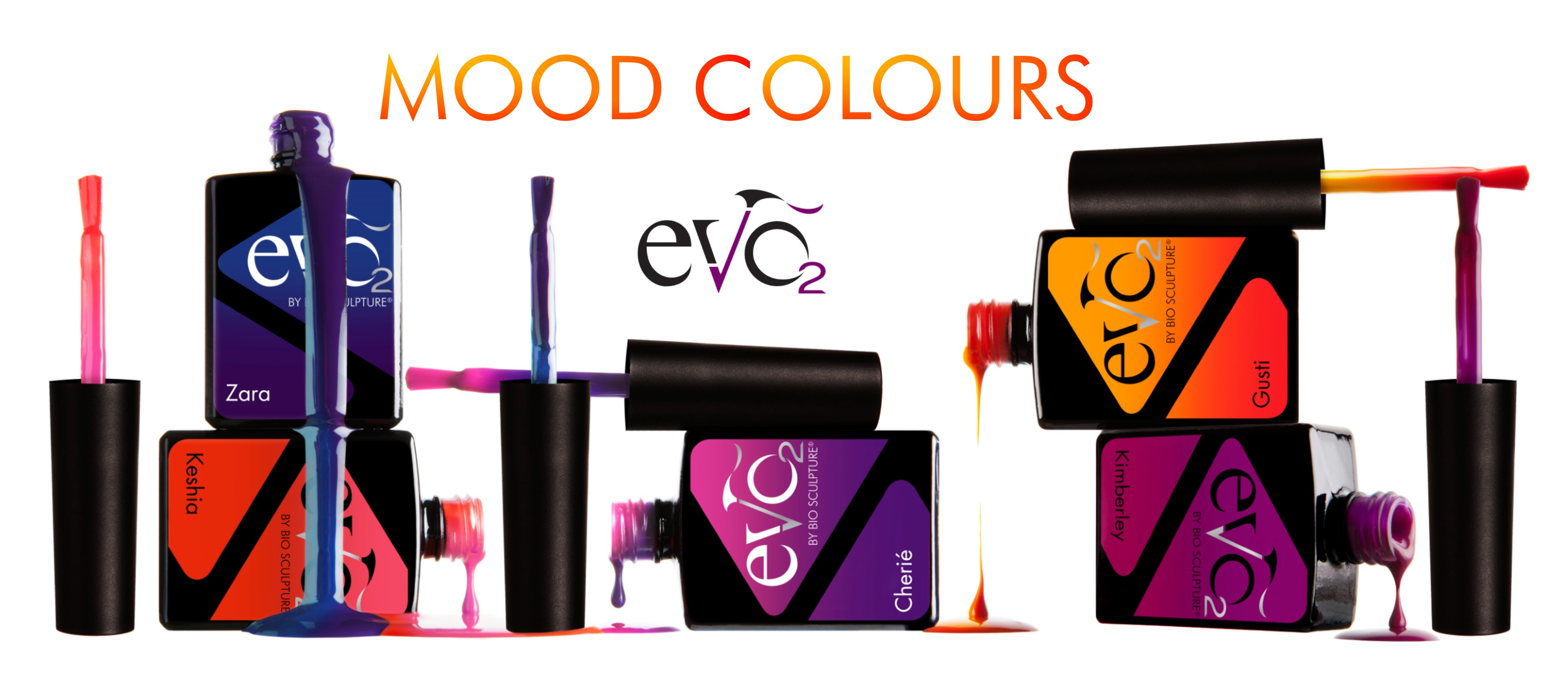 Evo-Mood-Colours